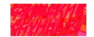 Логотип компании Финские сауны